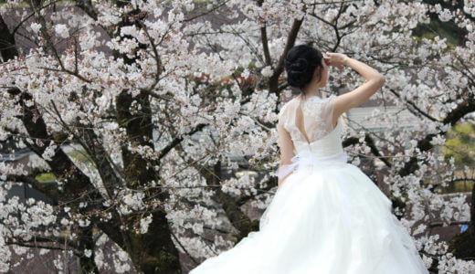 京都・蹴上インクラインで桜撮影を楽しもう!行き方と注意点