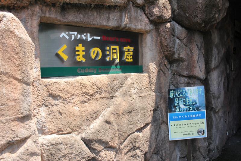 くまの洞窟